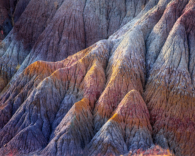 Colorful clay beds are produced through the leeching of minerals over time in the Chinle Layer at Vermilion Cliffs National Monument, Arizona