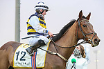 February 20, 2021: True Self (IRE) #12, ridden by Hollie Doyle, comes from off of the pace to beat Channel Maker #2, ridden by Joel Rosario, to win the Neom Turf Cup on the Saudi Cup undercard at King Abdulaziz Racecourse in Riyadh, Saudi Arabia. Shamela Hanley/Eclipse Sportswire/CSM