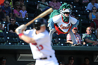 Great Lakes Loons mascot Lou E. Loon looks on as Jeremy Rathjen (13) bats during a game against the Fort Wayne TinCaps on August 18, 2013 at Dow Diamond in Midland, Michigan.  Fort Wayne defeated Great Lakes 4-3.  (Mike Janes/Four Seam Images)