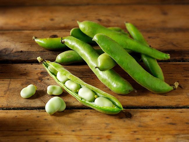 Fresh Broad beans in their pods