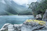Moody morning at Lake Mackenzie on Routeburn Track with beech tree, Fiordland National Park, Southland, South Island, UNESCO World Heritage Area, New Zealand
