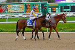 February 21, 2015: Pleasant Tales with Forest Boyce up in the Rachel Alexandra Stakes at the New Orleans Fairgrounds Risen Star Stakes Day. Steve Dalmado/ESW/CSM