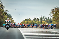...and the race in on!<br /> <br /> 44th AG Driedaagse Brugge-De Panne 2020 (1.UWT / BEL)<br /> 1 day race from Brugge to De Panne (203km shortened to 188km due to the windy weather conditions) <br /> <br /> ©kramon