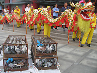 Pigeons are released at the start of the ceremony, followed by a ceremonial dragon dance