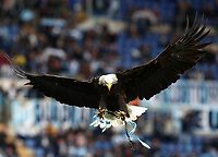 Football, Serie A: S.S. Lazio - Spal, Olympic stadium, Rome, February 2, 2020. <br /> Lazio's eagle Olimpia prior to the Italian Serie A football match between S.S. Lazio and Spal at Rome's Olympic stadium, Rome , on February 2, 2020. <br /> UPDATE IMAGES PRESS/Isabella Bonotto