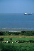 Europe/France/Normandie/Basse-Normandie/14/Calvados/Env. de Honfleur: Bocage normand et cargos allant au port du Havre