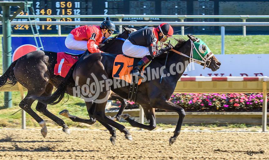 Beachtreasuregirl winning at Delaware Park on 10/5/19