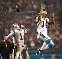 Sports action photography of the Carolina Panthers against the Arizona Cardinals during their NFL Wildcard game at Bank of America Stadium in Charlotte, North Carolina.  <br /> <br /> Charlotte Photographer - Patrick SchneiderPhoto.com