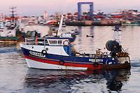 Europe/France/Bretagne/29/Finistère/Guilvinec: retour des chalutiers  au port dans la lumière du soir