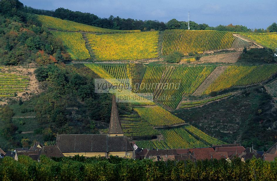 Europe/France/Alsace/68/Haut-Rhin/Niedermorschwihr : Vignoble et clocher torse de l'église