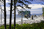 Fourth Beach, at Kalaloch is one of several signed and short trails to wild and woolly beaches of Olympic National Park in the Kalaloch area.  Olympic National Park. Olympic Peninsula