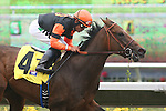 September 04 2010. Tales in Excess by Tale of the Cat breaks her maiden under Joel Rosario at Del Mar Race Track in Del Mar CA.