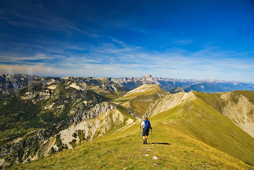 Lone hiker on the northern ridge of Mt. Jocou walks towards the Col de Seysse with a view of the Vercors Plateau in the background. Diois. Drome. France.