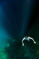 A freediver exploring the Blue Hole, Santo, Vanuatu, Coral Sea, Pacific Ocean MR