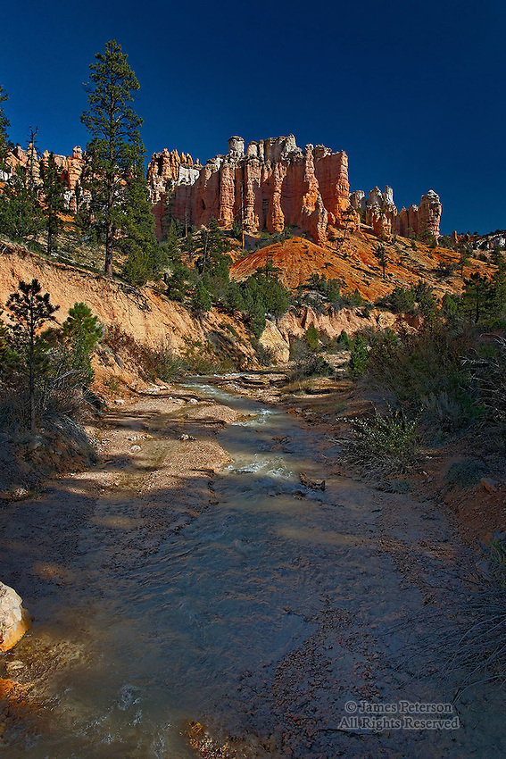 Water Canyon, Looking Downstream, Bryce Canyon National Park, Utah