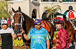 DEL MAR, CA  AUGUST 1: #7 Shedaresthedevil, ridden by Florent Geroux, in the paddock before the Clement L. Hirsch Stakes (Grade 1) Breeders Cup Win and You're In Distaff Division on August 1, 2021 at Del Mar Thoroughbred Club in Del Mar, CA.