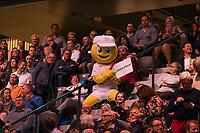 Rotterdam, The Netherlands, 16 Februari 2019, ABNAMRO World Tennis Tournament, Ahoy, Semis, Stan Wawrinka (SUI) - Kei Nishikori (JPN),<br /> Photo: www.tennisimages.com/Henk Koster