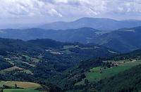 Europe/France/Rhône-Alpes/42/Loire/Massif du Forez : Paysage naturel