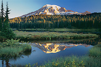 Mount Rainier<br />  from Reflection Lakes<br />Mount Rainier National Park<br />Cascade Range,  Washington