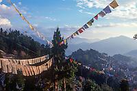 Tibetan prayer flags at Parphing.