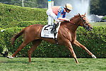 Zagora with Ramon Dominguez win the Grade II Balston Spa for fillies and mares,  3-year & up going 1 1/16 mile on the turf Trainer: Chad Brown. Owner Martin S. Schwartz