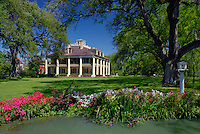 Live oaks, Houmas House Plantation and Gardens<br /> Highway 942,  River Road<br /> Darrow<br /> St. James Parish, Louisiana