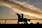 November 2, 2020: .scenes from Keeneland Racetrack in Lexington, Kentucky on November 2, 2020. Alex Evers/Eclipse Sportswire/Breeders Cup