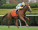October 4, 2014:  Daytthespa and jockey John Velazquez win the First Lady at Keeneland for owners Jerry Frankel, Ronnie Frankel, Steve Laymon and Bradley Thoroughbreds and trainer Chad Brown.Jessica Morgan/ESW/CSM