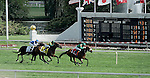 Photo By Michael R. Schmidt.Bayrir (FR) with jockey Christophe P. Lemaire aboard wins the Secretariat Stakes Saturday afternoon at Arlington Park.