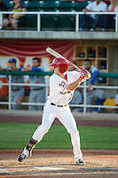 Kyle Survance Jr. (17) of the Orem Owlz at bat against the Ogden Raptors in Pioneer League action at Home of the Owlz on June 20, 2015 in Provo, Utah.The Raptors defeated the Owlz 9-6.  (Stephen Smith/Four Seam Images)