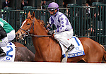 LEXINGTON, KY - APRIL 09: #1 Weep No More, jockey Corey Lanerie (purple cap) at the start of the 79th running of the Central Bank Ashland (Grade 1) $500,000 at Keeneland race course. April 9, 2016 in Lexington, Kentucky. (Photo by Candice Chavez/Eclipse Sportswire/Getty Images)