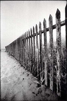 Dune fence. Nantucket, MA<br />