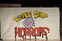 Little Shop of Horrors 2007