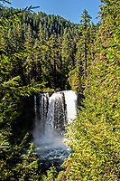 A view of Koosah Falls in the Cascade Mountians (3000 ft above sea level), Oregon.