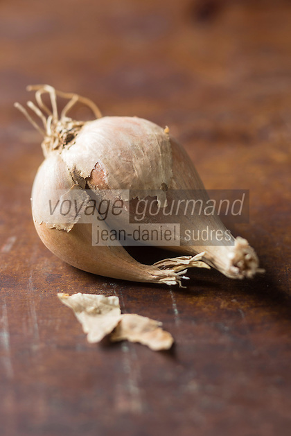 Gastronomie générale: Échalote grise  , Allium ascalonicum L. - Stylisme : Valérie LHOMME