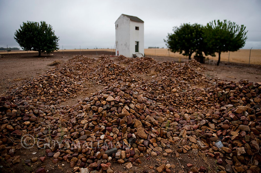 The Somonte occupied farm in Andalucia. The farm has been occupied and run a cooperative by members of the Syndicato Andalucia Trabajadores (SAT) since March 4th 2012.