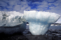 Icebergs at low tide in Icy Bay. Alaska USA Wrangell-St. Elias National Park.