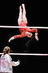 World Championships Gymnastics Individual Apparatus Finals  2015 SSE Hydro Arena.