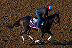 November 3, 2020: Madone, trained by trainer Simon Callaghan, exercises in preparation for the Breeders' Cup Juvenile Fillies Turf at Keeneland Racetrack in Lexington, Kentucky on November 3, 2020. John Voorhees/Eclipse Sportswire/Breeders Cup/CSM