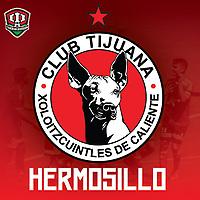 Xholos Tercera Division