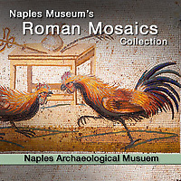 Roman Mosaics - Naples National Archaeological Museum - Pictures & Images
