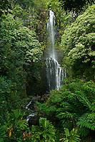 Beautiful Wailua Falls along the road to Hana on  Maui in Hawaii
