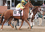 Nahrain (GB), ridden by John Velazquez, wins the Flower Bowl Invitational Stakes (GI) at Belmont Park in Elmont, New York on September 29, 2012.  (Bob Mayberger/Eclipse Sportswire)