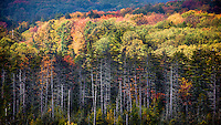 Deep Creek Lake Western Maryland