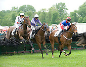 Radnor Hunt Races - 05/16/09