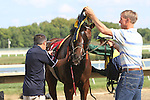 September 20, 2014:  Scenes from Pennsylvania Derby Day at Parx Racing in Bensalem, PA: Blinkers come off of Athelstane after the Alphabet Soup Handicap.  Joan Fairman Kanes/ESW/CSM