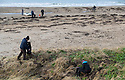 19/01/19<br /> <br /> Volunteers clean beaches near Cable Bay Anglesey to mark the RSPCA's 'PlastOff2019'<br /> <br /> All Rights Reserved, F Stop Press Ltd +44 (0)7765 242650  www.fstoppress.com rod@fstoppress.com