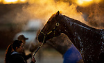 April 26, 2021: Monomoy girl gets a bath at Churchill Downs in Louisville, Kentucky on April 26, 2021. EversEclipse Sportswire/CSM