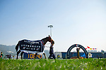 SHA TIN,HONG KONG-DECEMBER 10:  Mr. Stunning,ridden by Nash Rawiller, after winning the Hong Kong Sprint at Sha Tin Racecourse on December 10,2017 in Sha Tin,New Territories,Hong Kong (Photo by Kaz Ishida/Eclipse Sportswire/Getty Images)