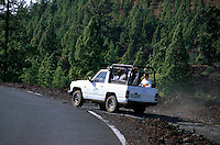 Spanien, Kanarische Inseln, Teneriffa, Pinar de Chio, Touristen mit Jeep